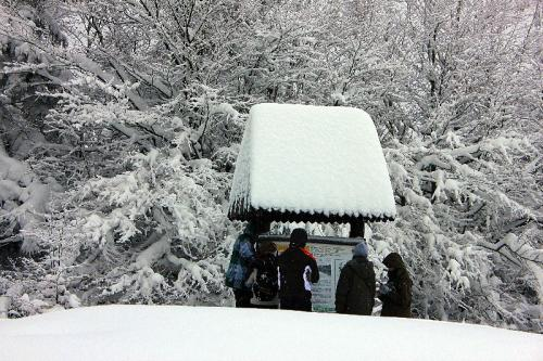 ferie zimowe 2012 (05)