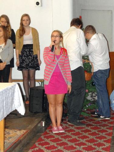jaselka-2013-06