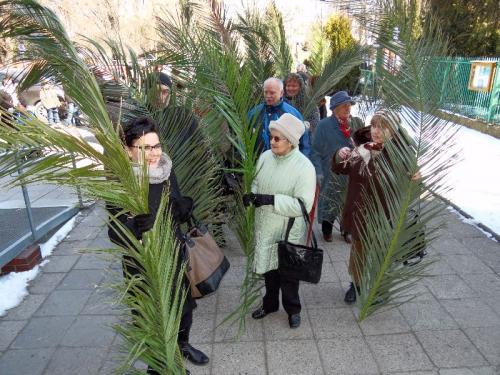 niedziela-palmowa-2013-13