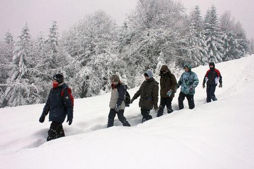 ferie zimowe 2012 (10)